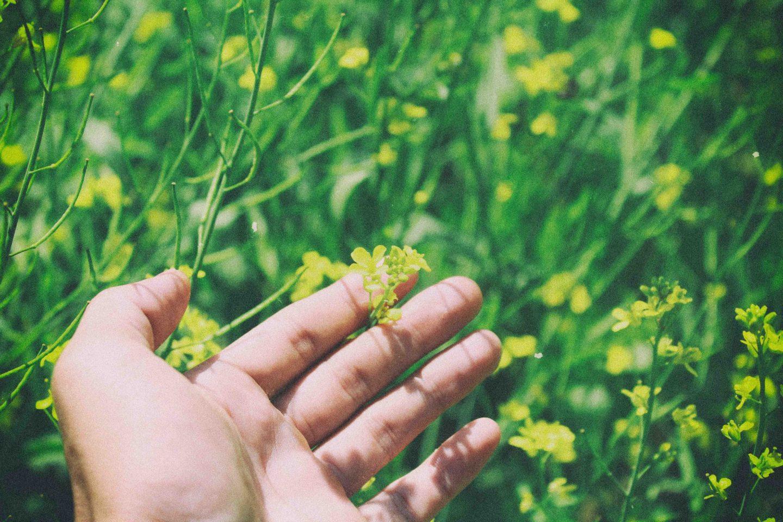 human nature hand