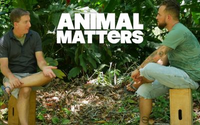 Animal Matters: New Video Series with Glenn Greenwald