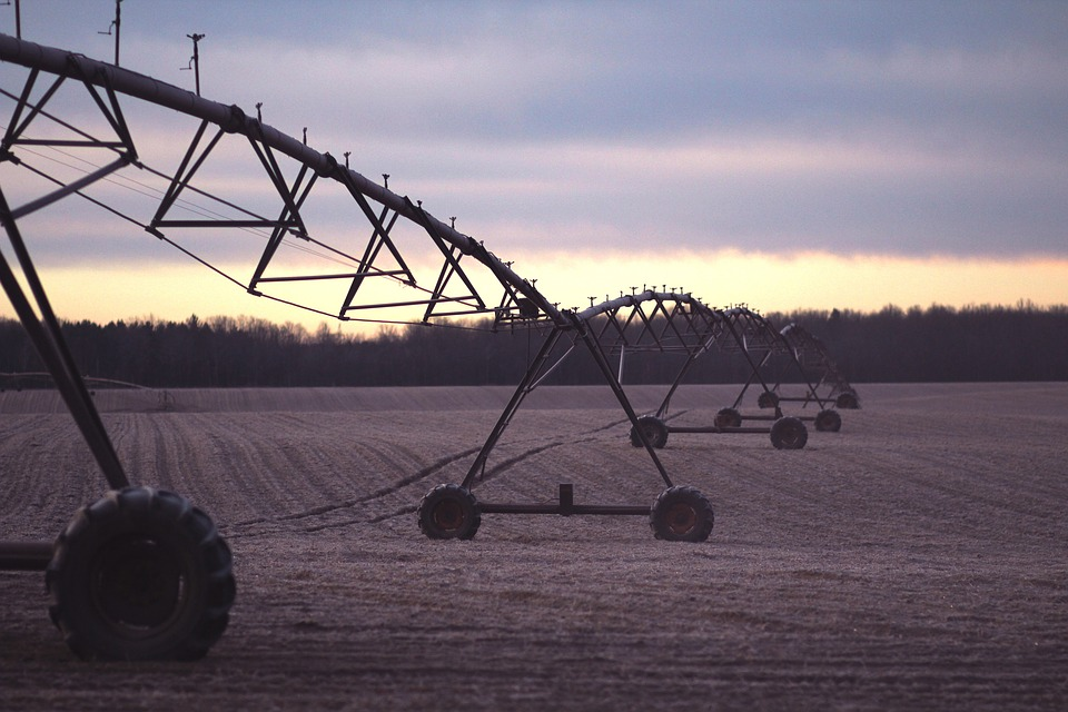 water usage to grow soy