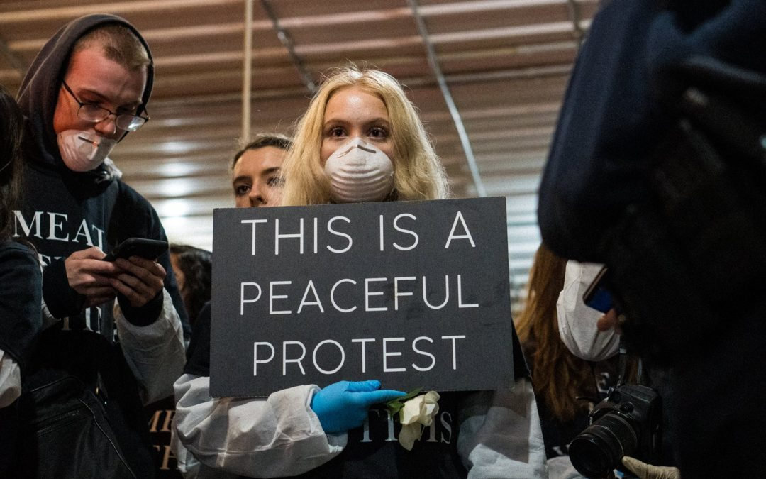 Watch: Unprecedented Animal Rights Protest at Pig Farm