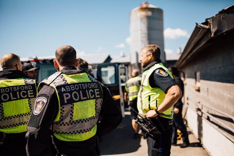 police pig farm