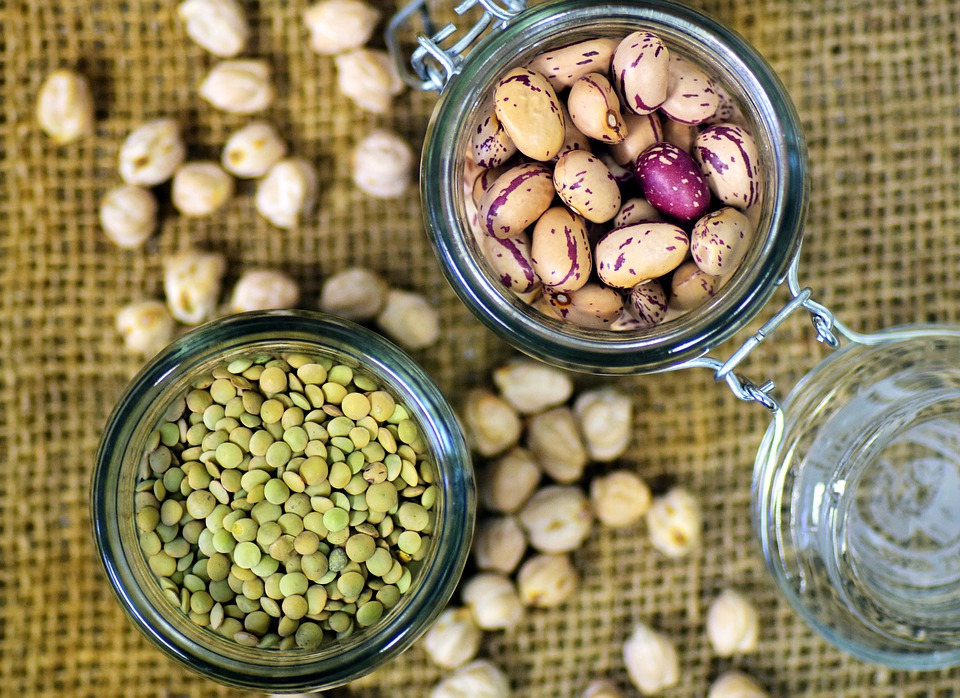 vegan nutrition legumes