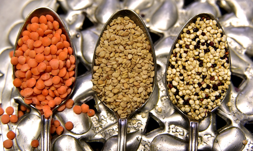Vegan Nutrition: How to Stay Healthy on a Plant-Based Diet