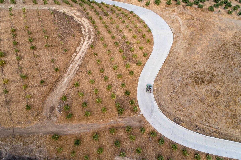 road farm climate