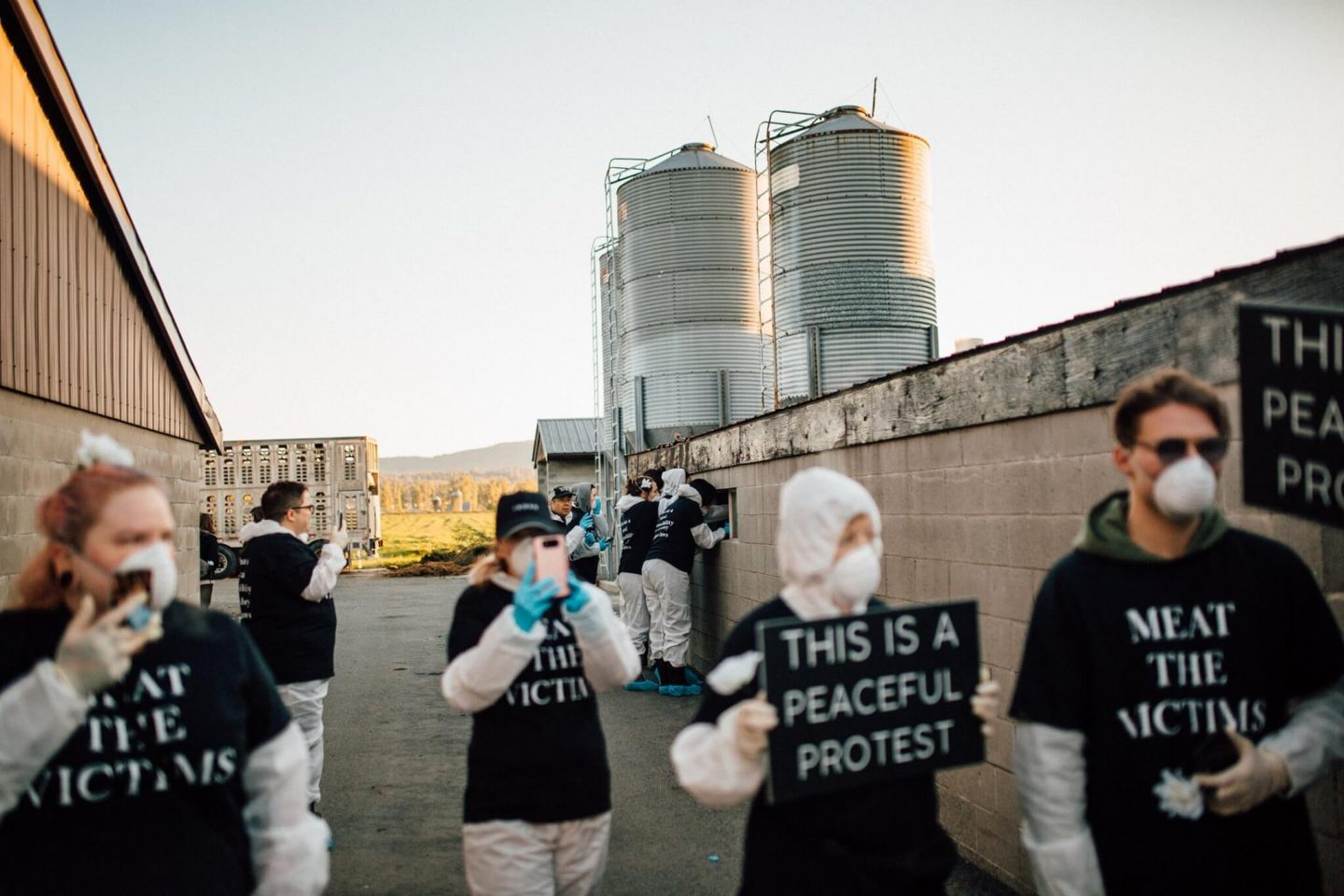 activists factory farm