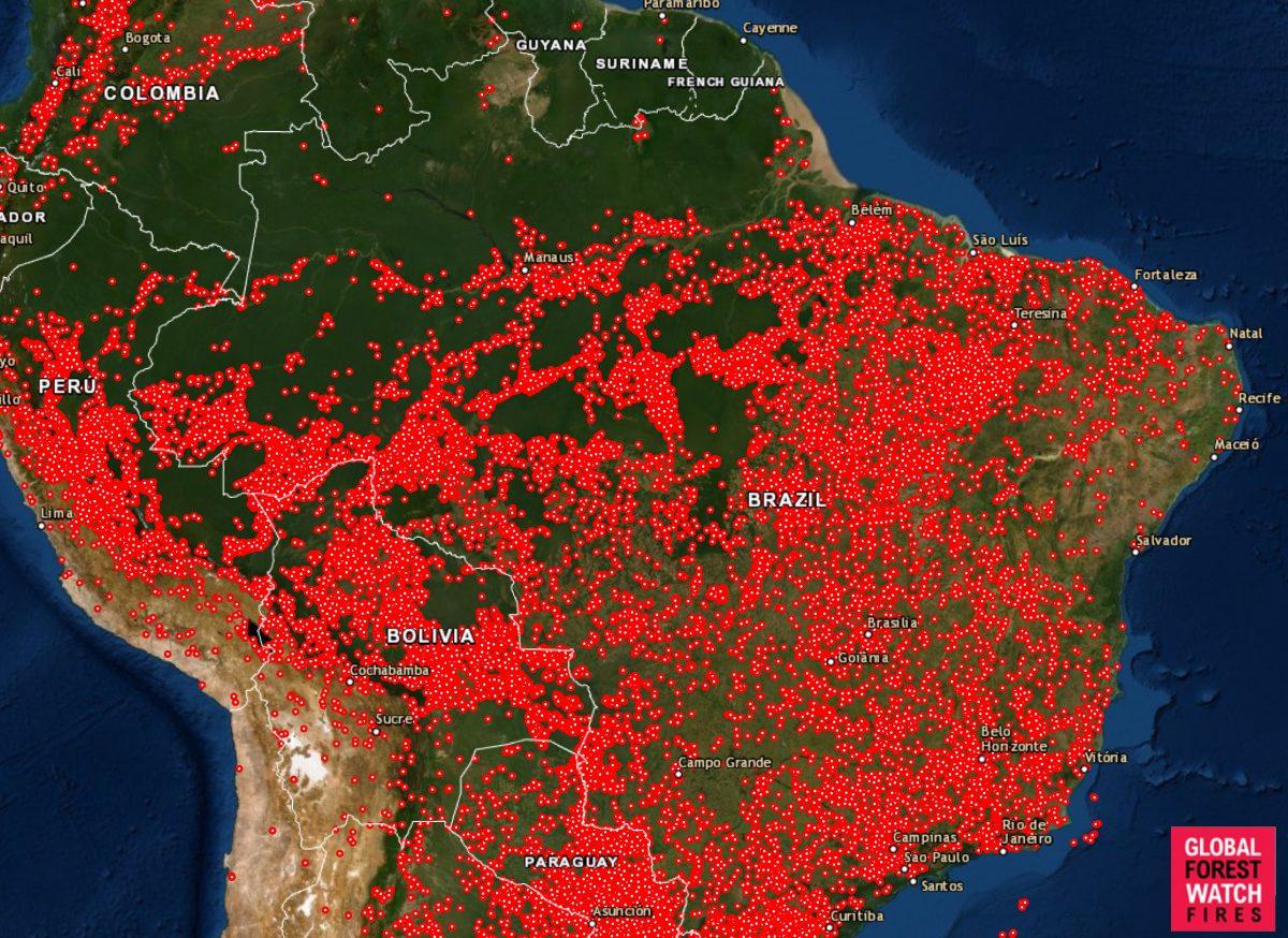Brazil Fires Map