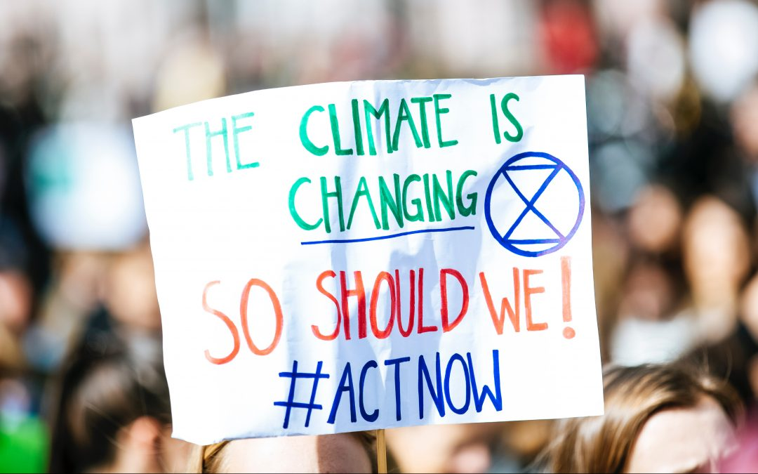 What Can I Do About Climate Change? 10 Simple Climate-Friendly Actions