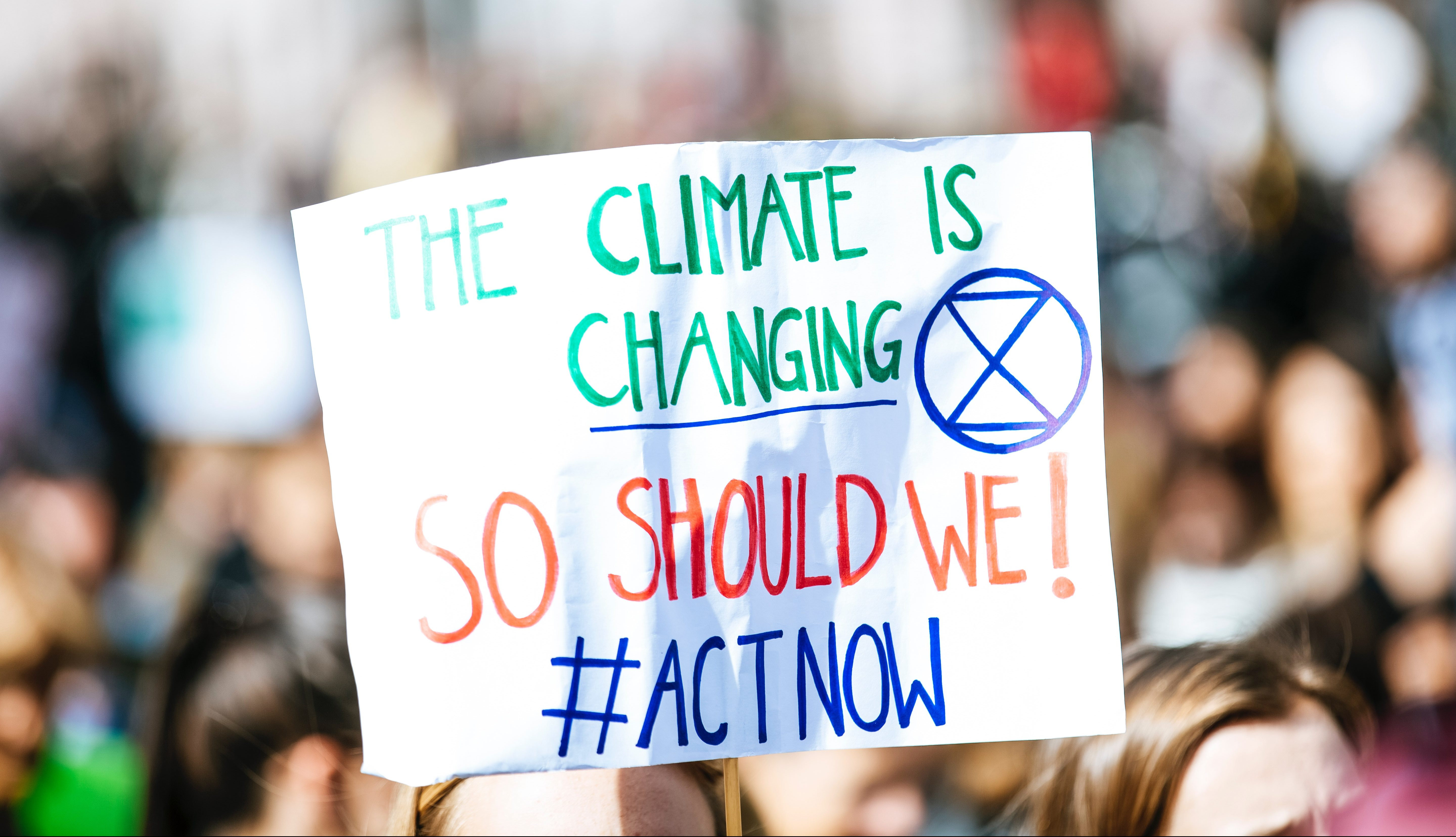 Climate Change Protester