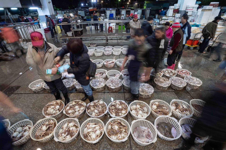fish market sale