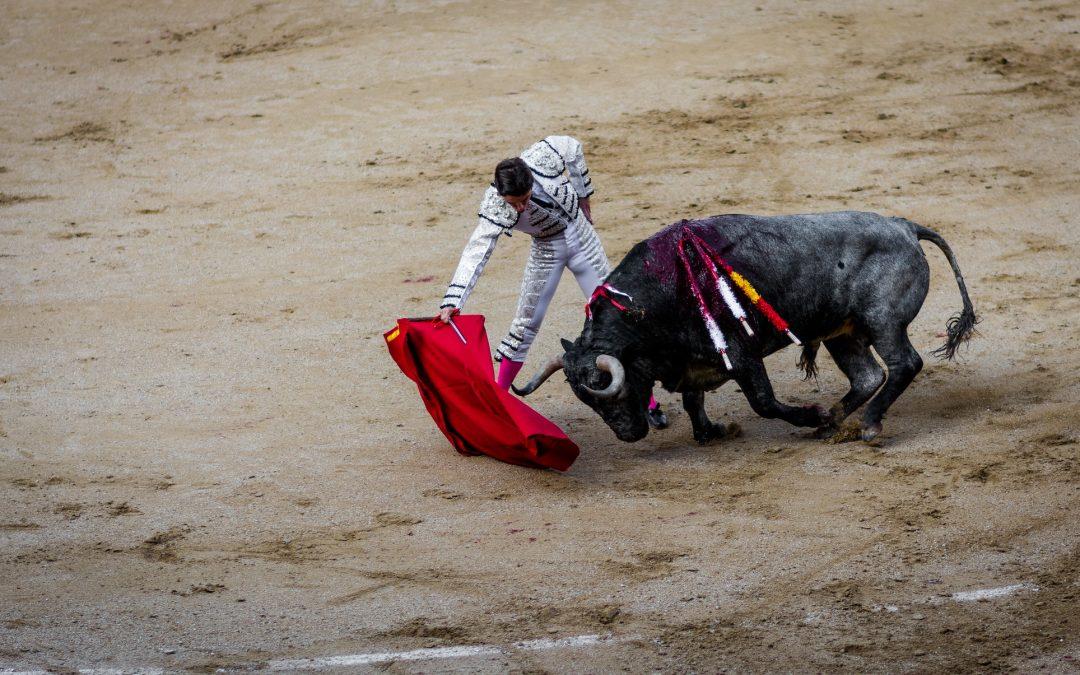 Coronavirus Pandemic Revitalizing Dispute Over Spanish Bullfighting