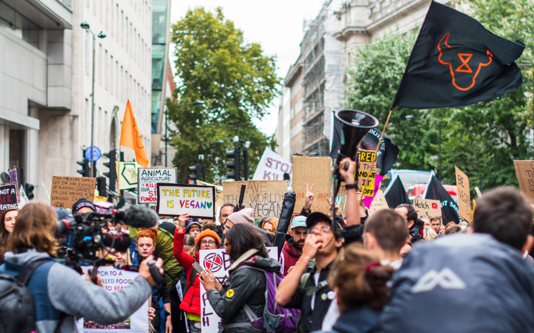 Climate Protests Move Online Amid Pandemic