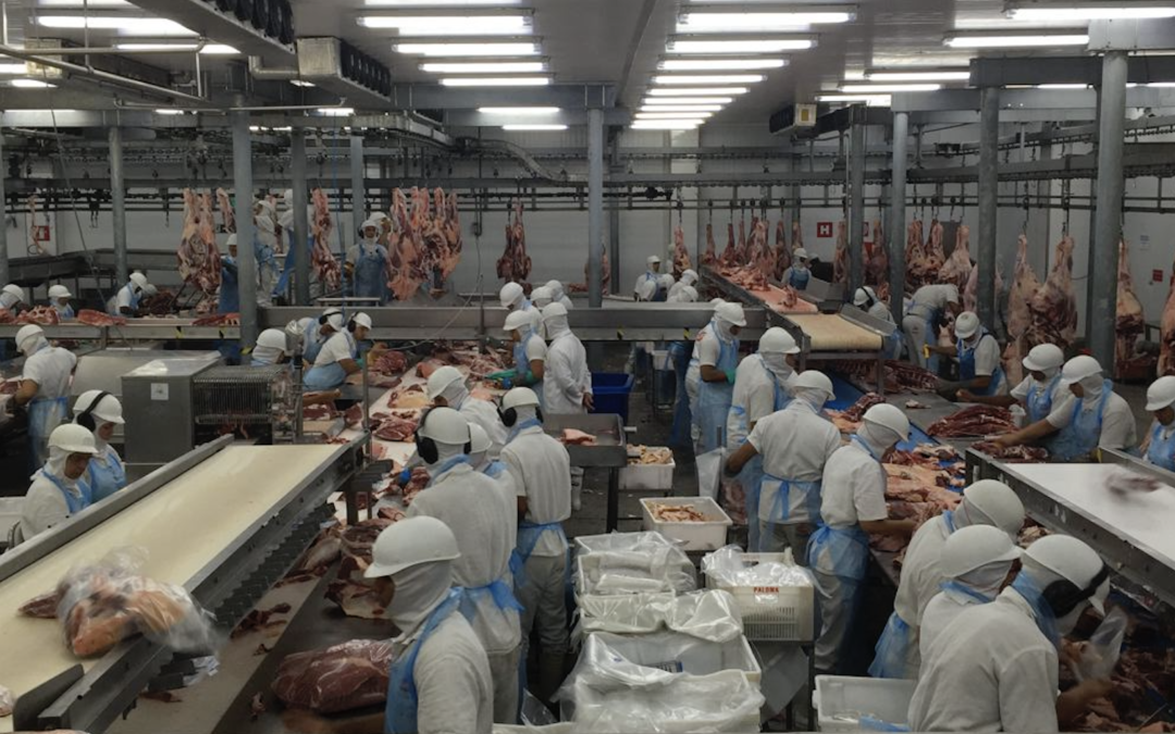 Profit Over People: The Meat Industry's Exploitation of Vulnerable Workers