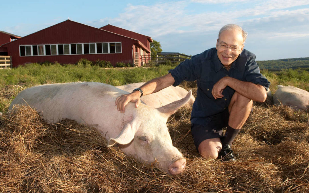 Pandemics, Liberation, and Animal Ag: An Interview With Peter Singer