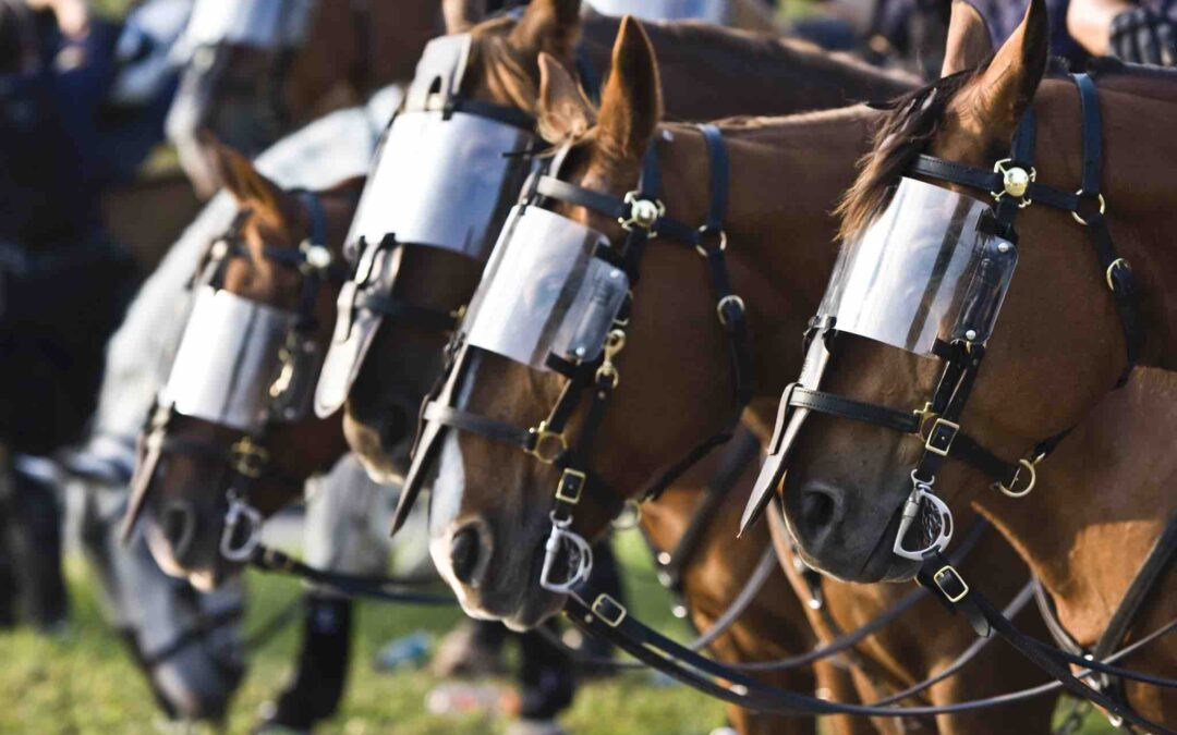 At Black Lives Matter Protests, Police Horses Become Another Troubling Symbol of Oppression
