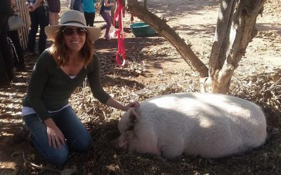 Using Research and Data to Create an Inclusive Animal Rights Movement