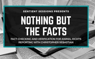 How to Fact-Check and Verify Sources for Animal Rights Reporting