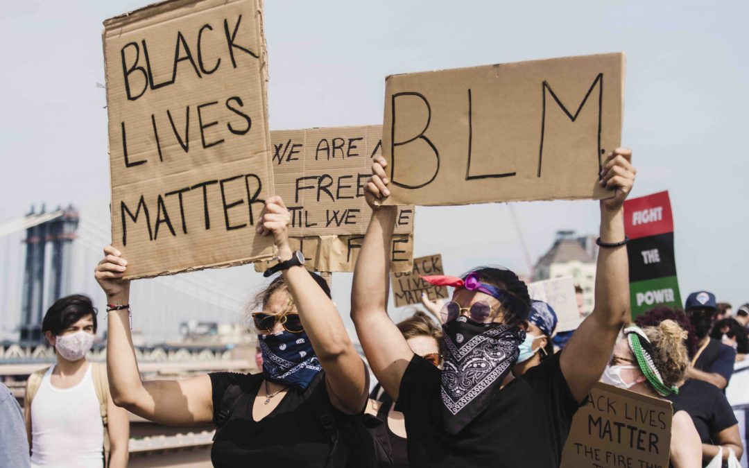 Protesters, Pigs & the Diversity Problem in Animal Welfare