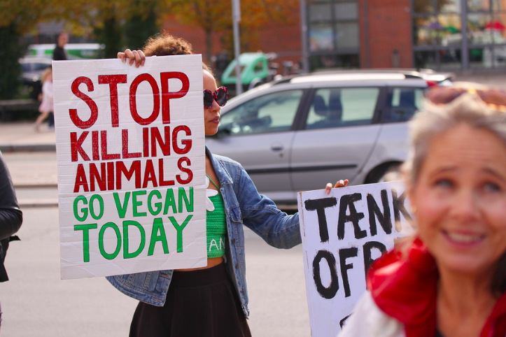 help animals by becoming a vegan or vegetarian
