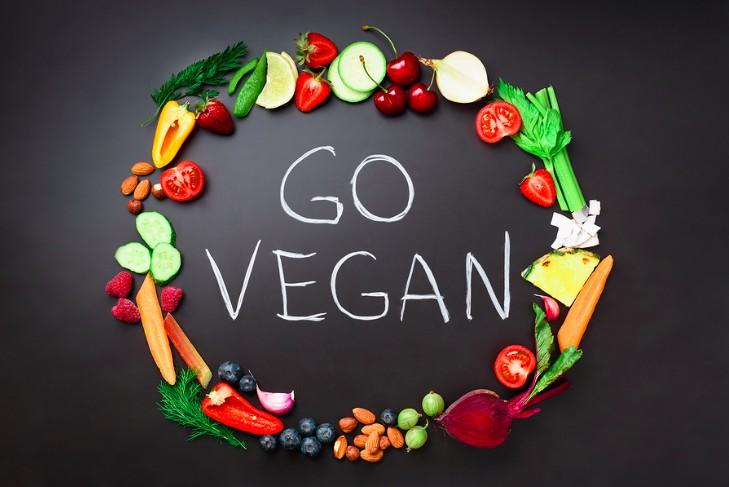 why you should go vegan