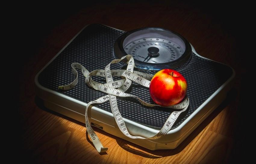 do vegans lose weight
