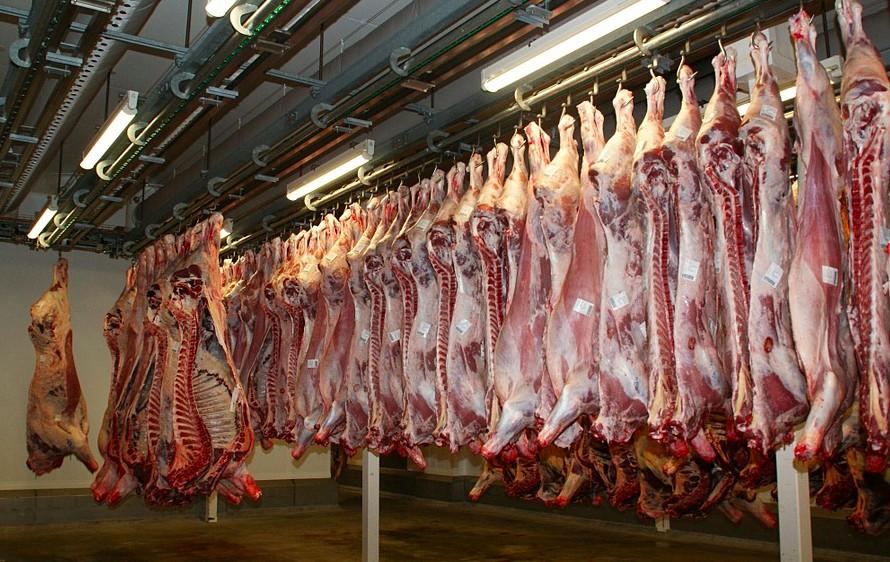 slaughterhouses in america